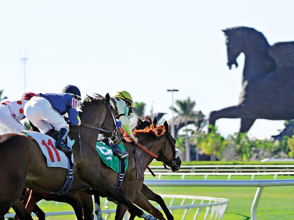 What to Expect at the Pegasus World Cup This Weekend