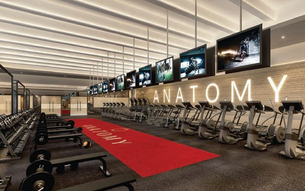 The gym is equipped with state-of-the-art machines and offers a variety of fitness classes that target different areas of the body. PHOTO COURTESY OF ANATOMY COCONUT GROVE