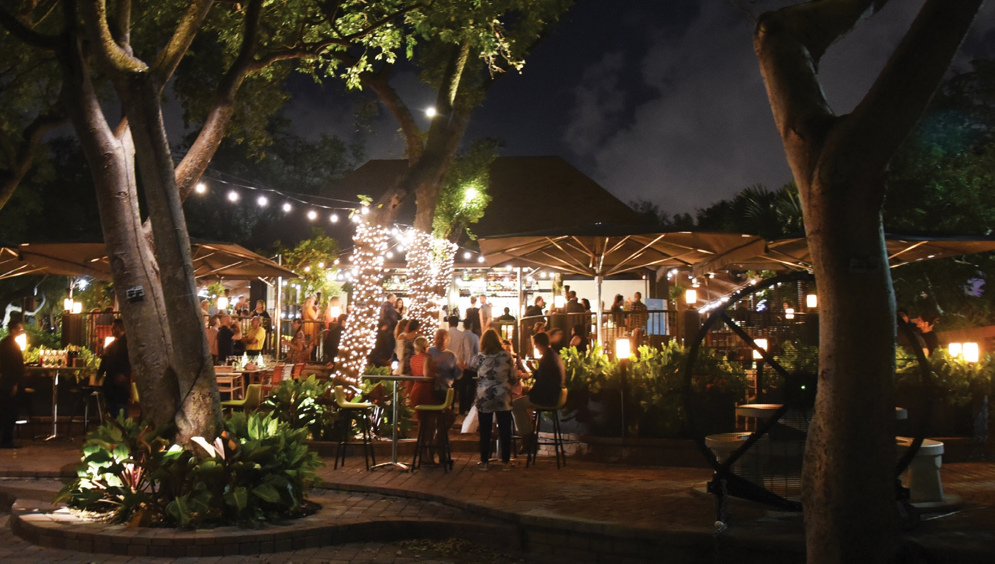 6 Restaurants Leading the Culinary Renaissance in Coconut Grove