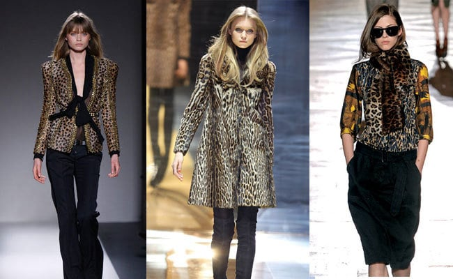 1 - Trend Report: Animal Prints