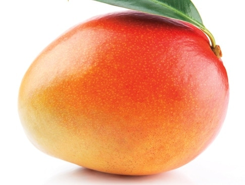 1 - Mangoes on Our Mind