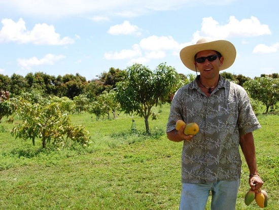 1 - Q&A: Dr. Richard Campbell Talks Mangos